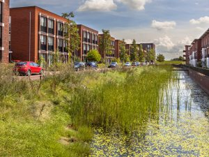 Building with Nature - Meer Groen en Blauw voor Klimaatbestendige en Economisch Robuuste Steden