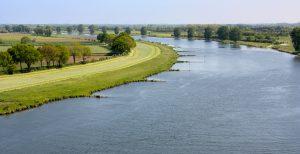 Rijkswaterstaat werkt samen met Arcadis aan ecologisch herstel Maas