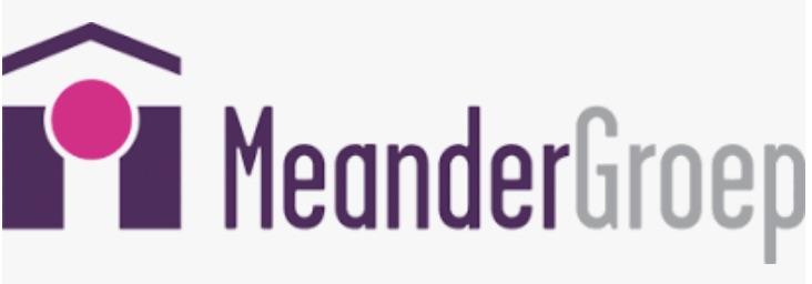 Logo MeanderGroep